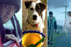 The Bugger ad, Spot the dog and Ghost Chips are all some of New Zealand's favourite TV commercials.