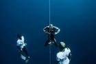 Watch NZ Herald Focus: Freedive world champion William Trubridge has broken the world record with a 102-metre dive.