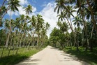 Exploring Vanuatu's back roads and beaches by buggy is a great way to see the sights - but not if you're a timid driver. Photo / Getty Images