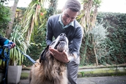 Dr Todd Keenan, with canine client Tank, has been running his practice in Freemans Bay for 11 years. Photo / Michael Craig
