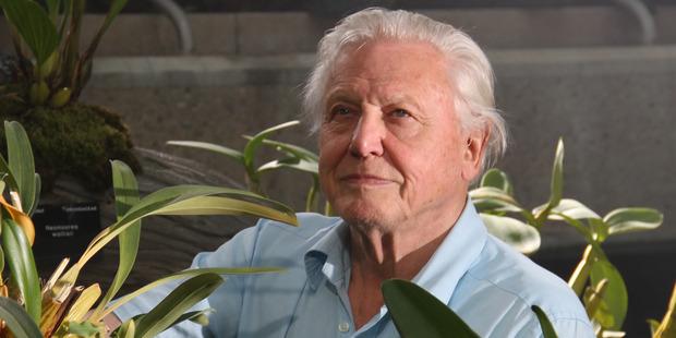 Footage of Sir David Attenborough narrating a Pokémon Go game has gone viral.