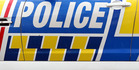 Police are at the scene where a car crashed into a lamp post on Maunganui Rd. Photo/file