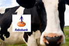 Rabobank Best of the Country - 25th July 2016