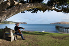 Cellist Robert Ibell, 54, of Wellington, playing his cello under a pohutakawa tree at Omapere. Photo / Mark Mitchell.