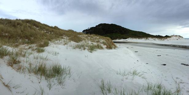 The white sand at Rarawa Beach, Northland. Photo / Mark Mitchell