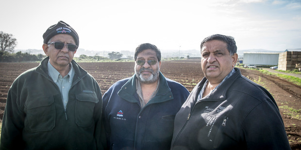 (From left) Dinesh, Bharat and Amrut Bhana face an uncertain future amid urbanisation. Photo / Michael Craig