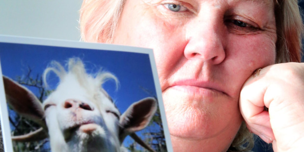 Pam Gedyes with a pictur of her pet goat, Gruff. PHOTO/STUART MUNRO