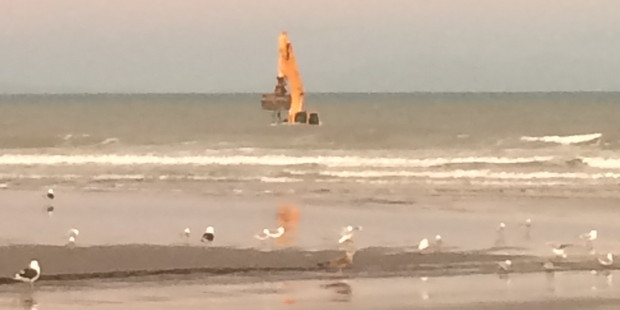 Digger ahoy! This excavator attracted attention off the beach at Paraparaumu. Photo / Kapiti Coast District Council.