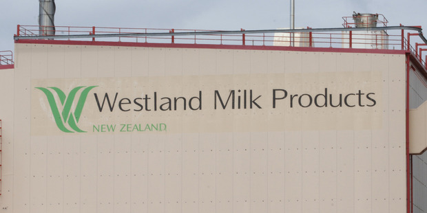 Westland Milk Products has appointed Toni Brendish as its new chief executive. Photo / File