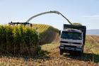 Develop a future in arable farming.