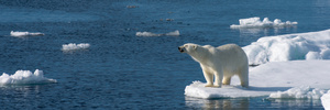 Climate change deniers 'dangerously wrong'