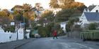 WORRY: Napier residents have concerns about a pair of pitbull dogs believed to be roaming Bluff Hill. PHOTO/DUNCAN BROWN.