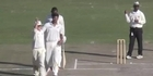 Watch: 12th man celebrates wicket