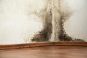 Issues raised by disgruntled landlords and tenants to the Tenancy Tribunal included unpaid rent, and having to replace walls and rotten floors. Photo / iStock