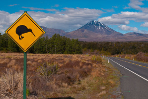 There is the important impact of our conservative KiwiSaver approach on the New Zealand economy. Photo / Thinkstock
