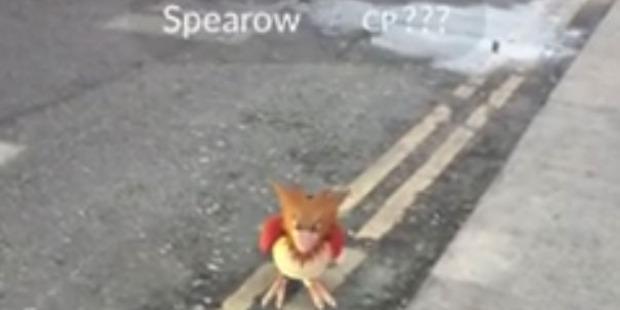 David Attenborough tracks a Pokémon called Spearow.