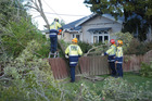 Masterton Fire Service staff responded to a fallen tree in Renall Street, Masterton, which damaged a phone line and narrowly missed the power line.