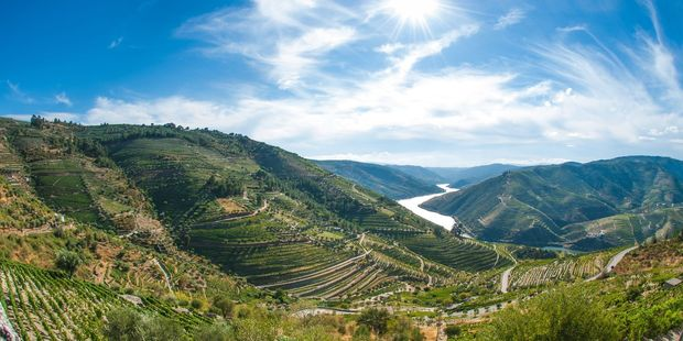 The terraced vineyards of northern Portugal's Douro Valley. Photo / 123RF