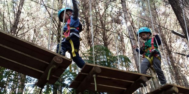 Tree canopy walk at Adventure Forest. Photo / Louise Taylor