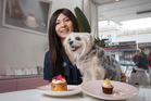 Lillian Chueh and her dog Mwaji are tempted by the cupcakes from The Caker on Karangahape Rd, as the SPCA prepares for their fundraising drive on August 15. Photo / Greg Bowker