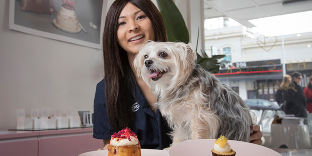 Loading Lillian Chueh and her dog Mwaji are tempted by the cupcakes from The Caker on Karangahape Rd, as the SPCA prepares for their fundraising drive on August 15. Photo / Greg Bowker