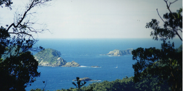 View from Raoul Island, one of the Kermadecs where the vessels were caught illegally fishing.