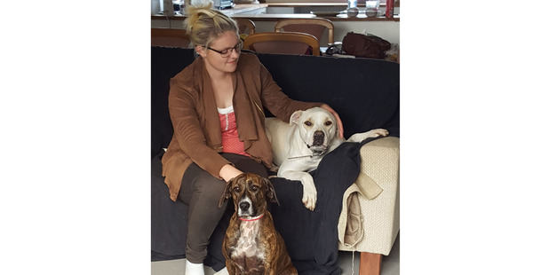 Michaela Beadle and her four-legged family members. Beau (on the couch) was trained at the Ngawha prison and adopted from the Bay of Islands SPCA, and dachshund-cross Stella.