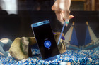 The Samsung Galaxy Note 7 smartphone in a tank of water during a demonstration in London. Photo / Bloomberg / Chris Ratcliffe
