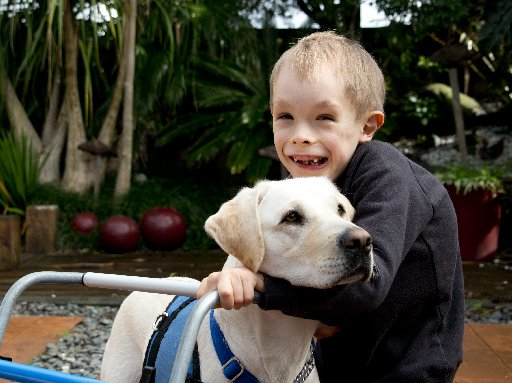 Isaac Gray with his soon to be assistance dog, Lady the silver lab. Photo/Ruth Keber