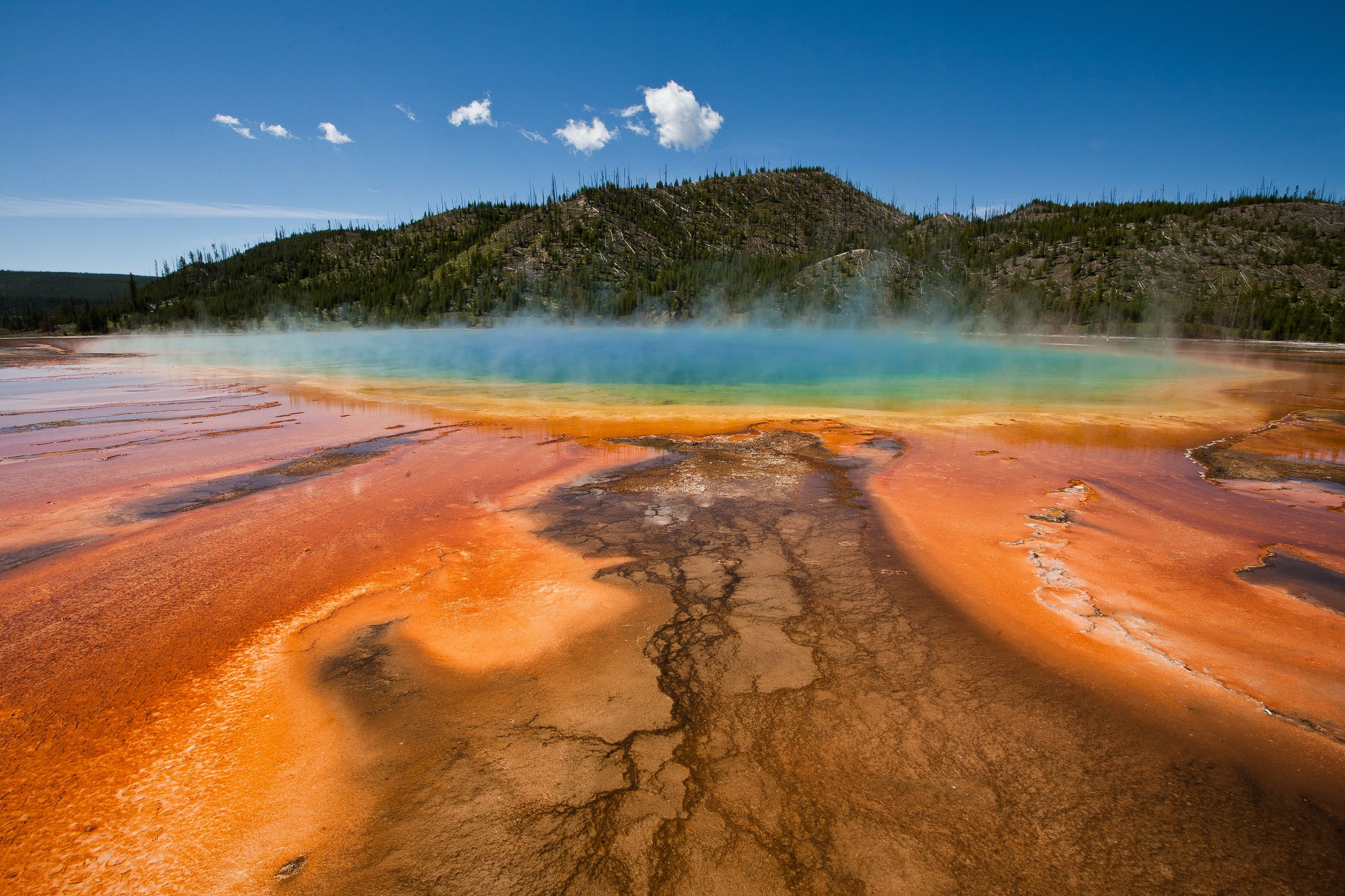 Millions of people visit geothermal Yellowstone every year. Photo / 123RF