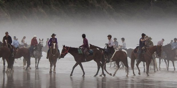 Riders in the annual Catlins Canter make their way across Jacks Bay. Photo / Otago Daily Times