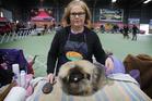 Maryanne Rushton with her Pekingese dog Jay Jay Silverado Wu of Wuhan. Photo / Doug Sherring