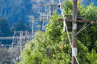 POWER: Unison Networks has advised that by the end of today the majority of homes in the Taupo Plains would have power, through network or localised generation.