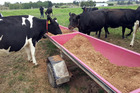 Fonterra has moved to discourage its farmers from using palm kernel expeller (PKE). Landcorp is now also moving away from using the feed supplement.