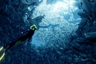 The moment you take charge of a scuba diver and start flipping through the water, you'll be struck by its spectacular beauty in PS4 game Abzu.