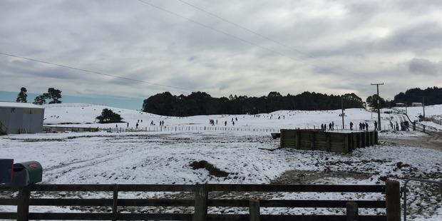 Snow near Taupo yesterday. Photo / Thomas Richardson