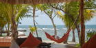 View: The Family Coppola Resorts - Coral Caye, Belize