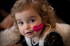 Lucca Holecliffe is doing well but still takes anti-cancer drugs twice a day. Photo / Dean Purcell