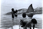Scene from the Steven Spielberg's terror-in-the-water film, Jaws, released in 1975.