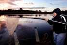 Fred Oakley whitebait fishing on the edge of the Wairoa River early this morning. Photo/file