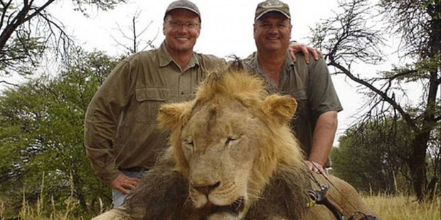 Walter Palmer, who is believed to have paid around $70,000 to illegally hunt the animal, said he had no idea about Cecil's protected status. Photo / Facebook