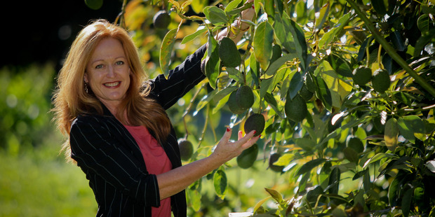 NZ Avocado Growers' Association chief executive Jen Scoular /supplied