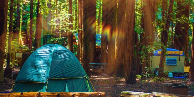 Hiking and camping are popular in Redwoods National Park. Photo / 123RF