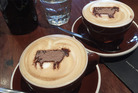 Cafe culture and cattle collide. Photo / Brown Cow Cafe and Bar/ Julie-Ann