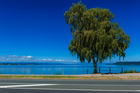 Taupo's a holiday town that can still charm the locals says Ewan McDonald.