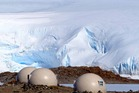 These Antarctic domes comprise the most remote hotel in the world. Photo / White Desert, Warren Rasmussen
