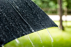 Rain is expected this evening and tomorrow before a high of 20 degrees on Friday.