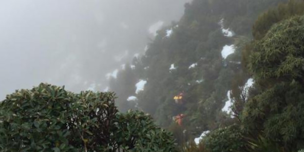 Rescue workers on the Routeburn Track. Photo / Supplied via police