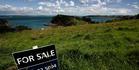 Realtors are unashamedly pushing land as a savings bank for investors. Photo / Chris Skelton