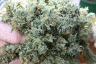 A cake laced with cannabis was allegedly served to unsuspecting diners at a Nelson restaurant. Photo / file